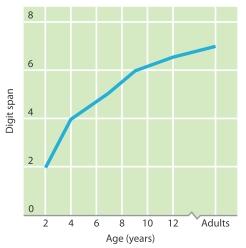 Hình 7.8Sự thay đổi biên độ nhớ theo quá trình phát triển. Trong một nghiên cứu, biên độ nhớ tăng lên khoảng 3 con số đối với trẻ từ 2 tuổi tới 7 tuổi (Dempster, 1981). Tới 12 tuổi, biên độ nhớ chỉ tăng chừng 1-2 con số.
