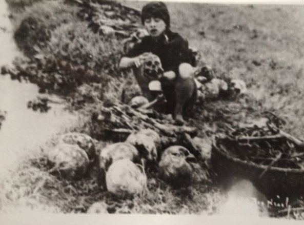 Nina Hien - Fig. 05